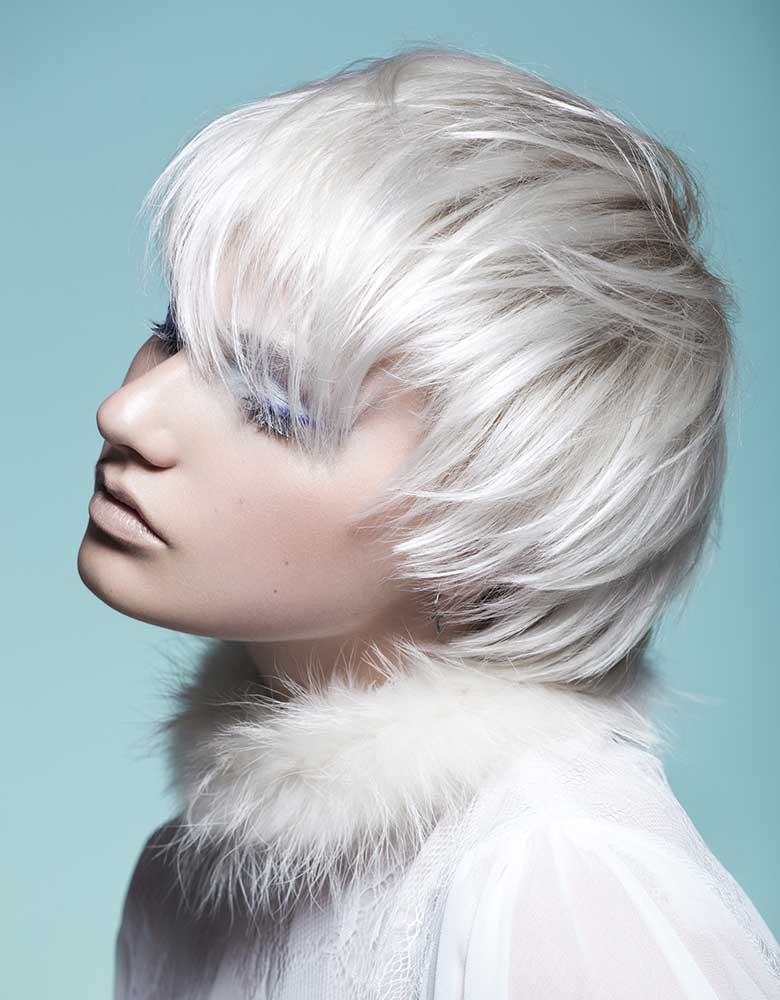 img-collection-purement-givre-coiffure-francine-ladriere06